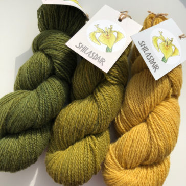 Episode 21 – Post Edinburgh Yarn Festival